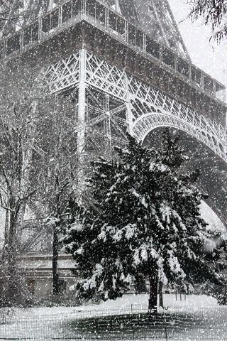 Paris Snowfall~